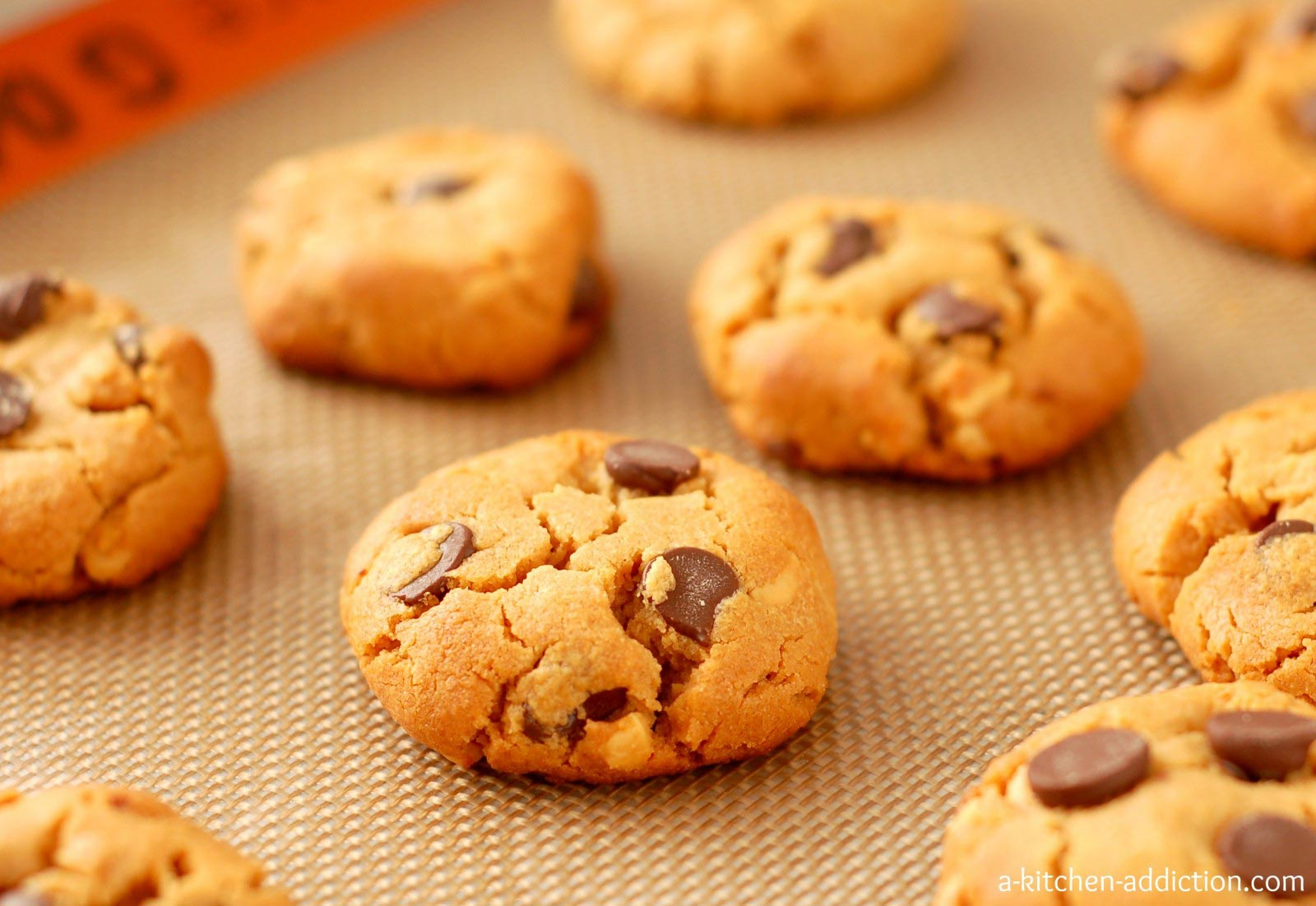 3 quick recipes for baking cookies without heating the oven the 3 quick recipes for baking cookies without heating the oven the trent forumfinder Images