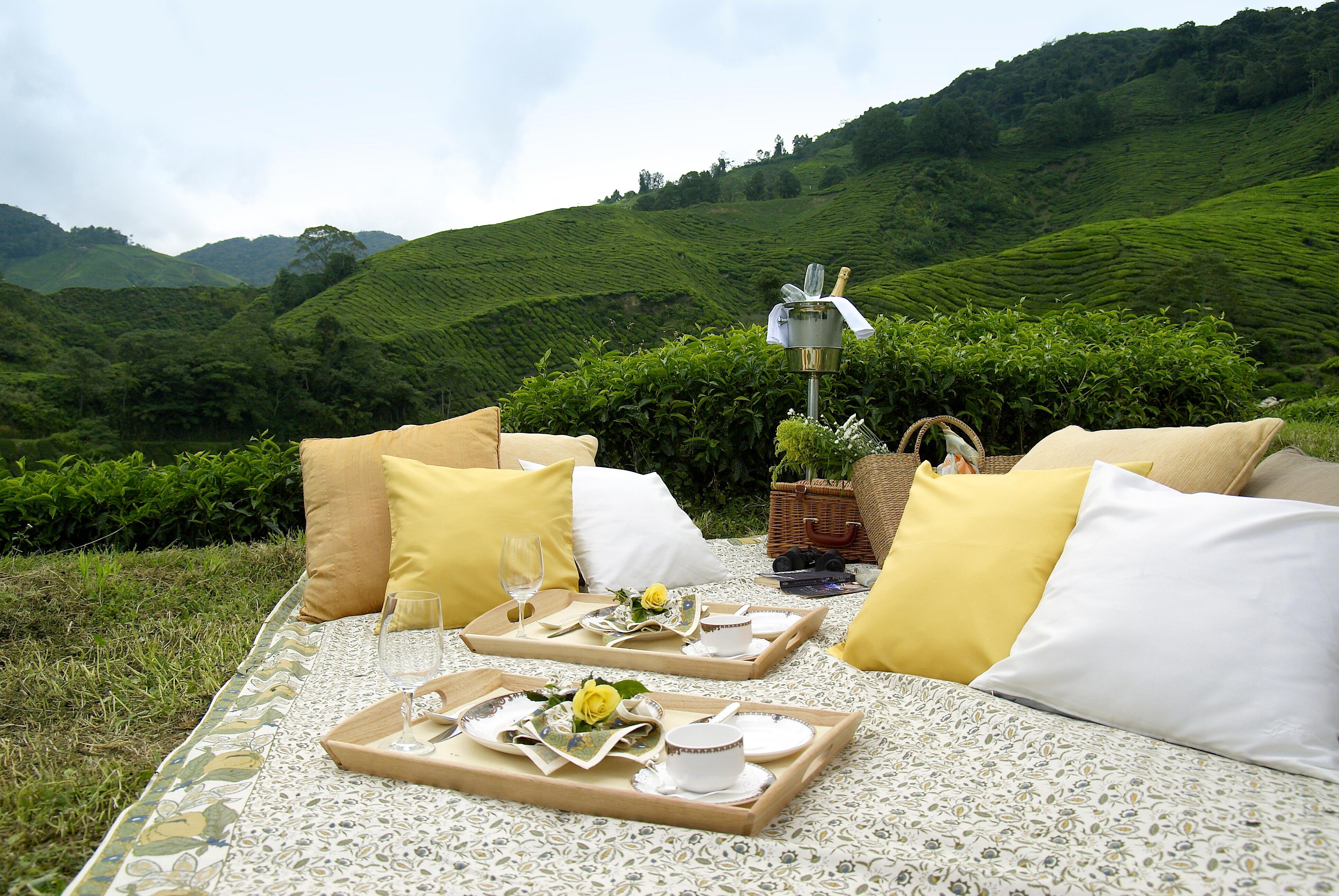 lifestyle town spectacular spots romantic picnic