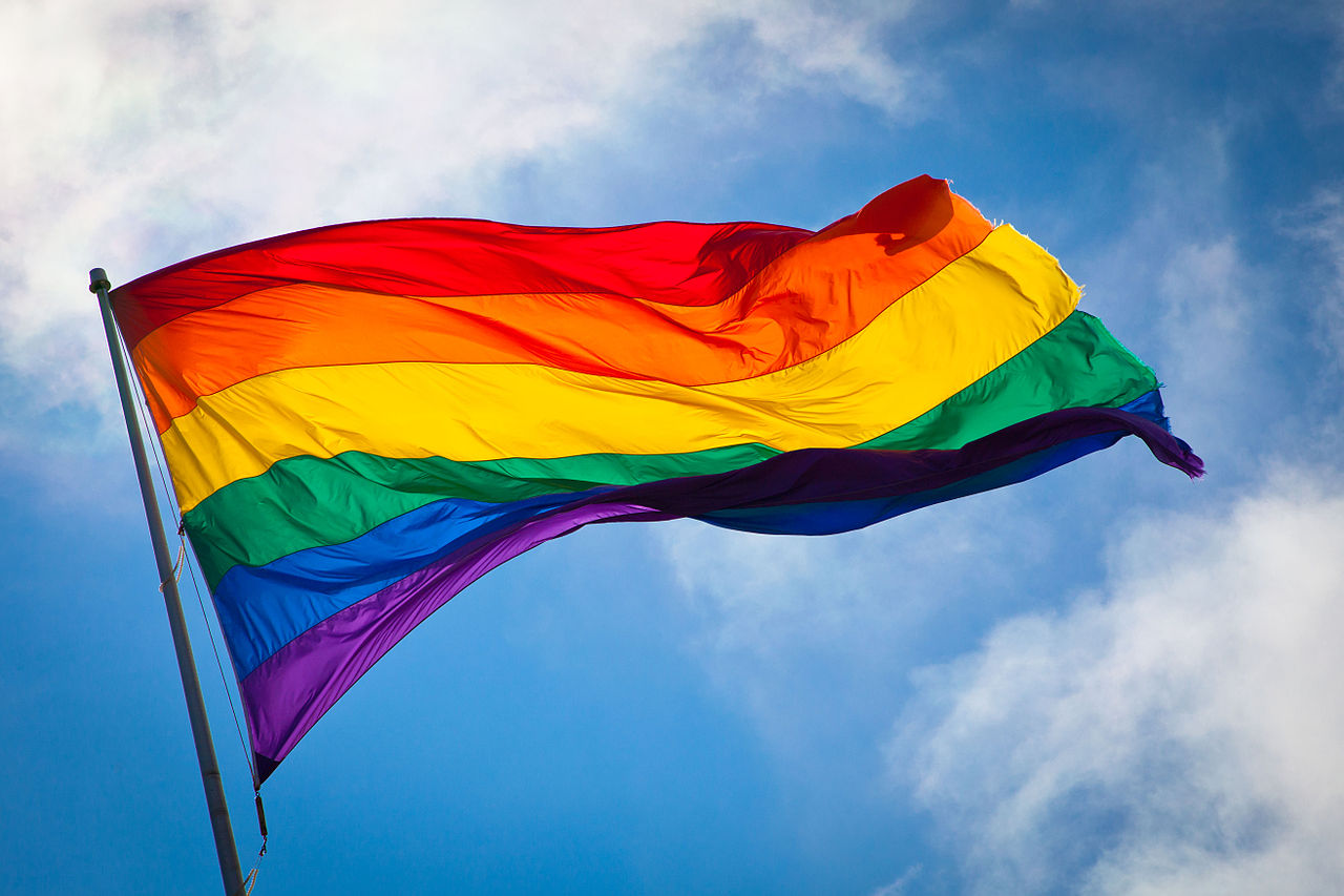 Proposed new national flag adopts a rainbow design to take into account the aspirations of Nigeria's 250 ethnic groups