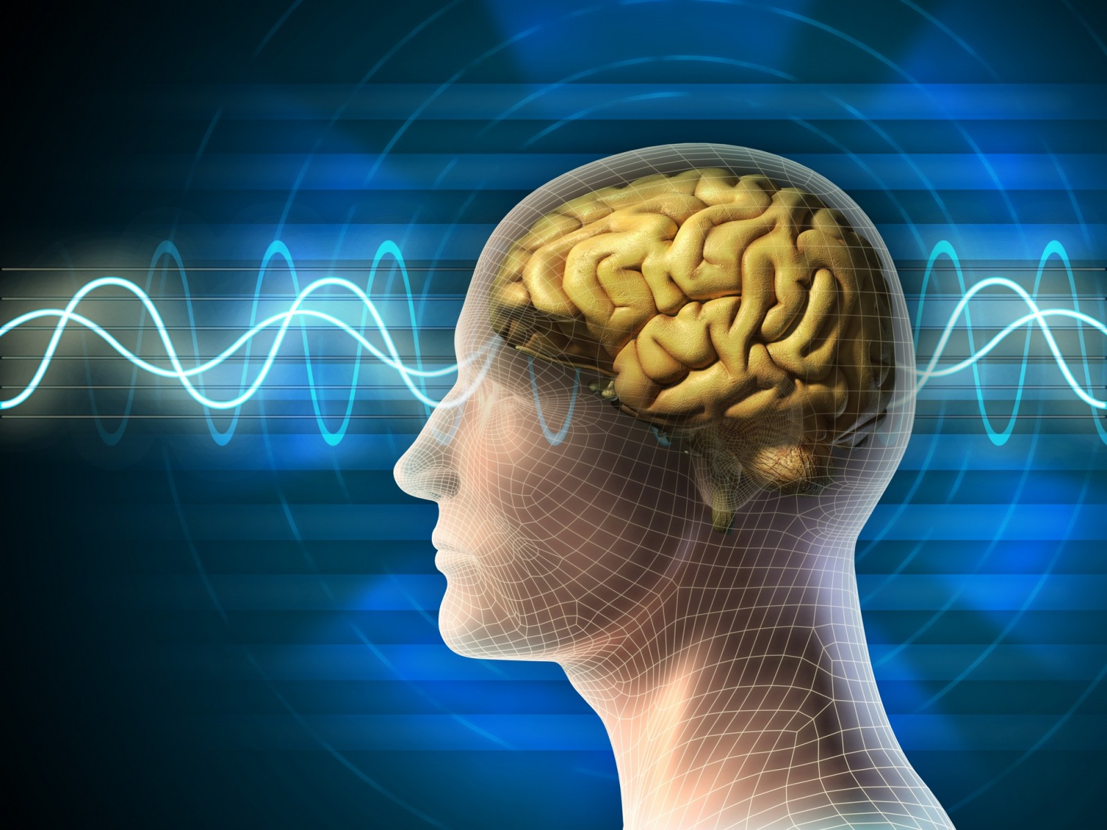 brain waves intelligence