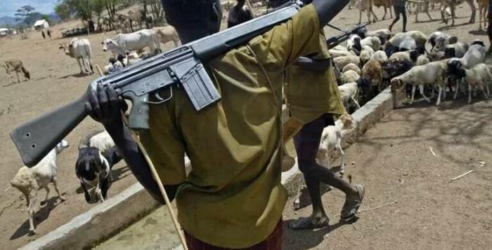 fulani herdsmen militia priest