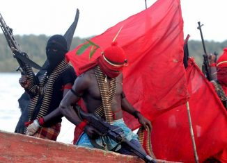South African Niger Delta Avengers, militants