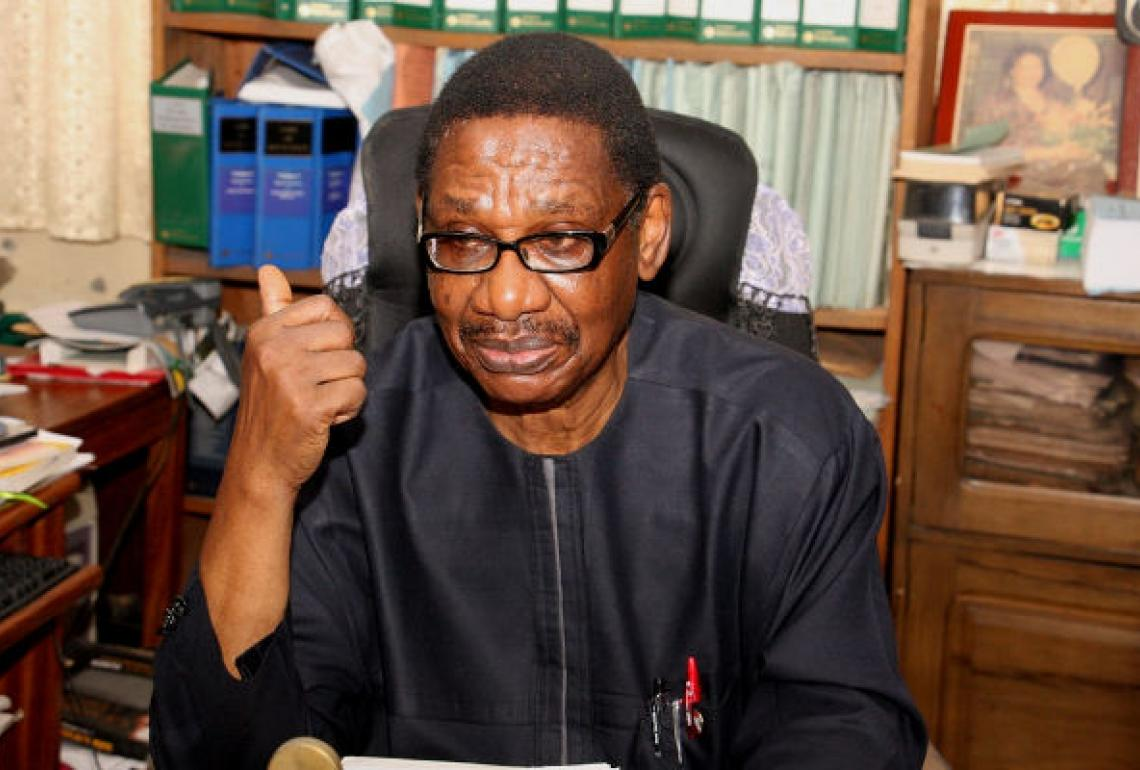 Image result for Professor Itse Sagay